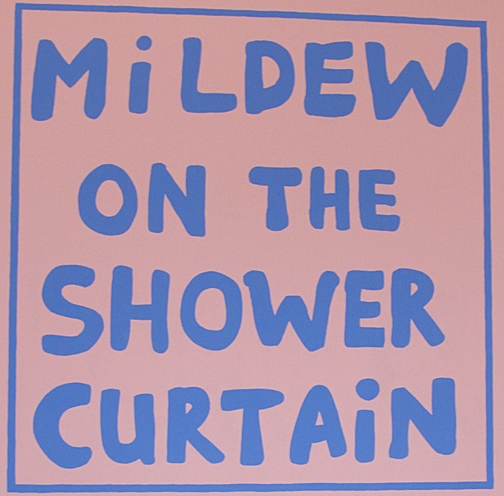 mildew in the shower