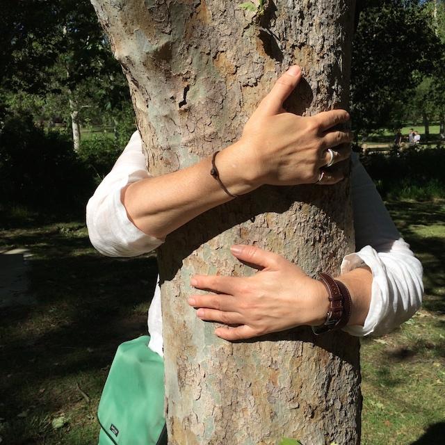 treehugging1